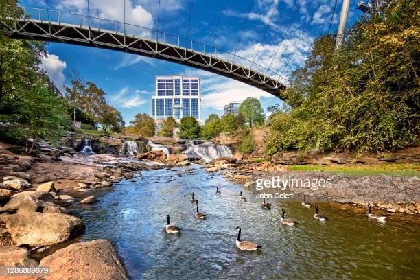 falls park on the reedy, greenville, south carolina - waterkant stockfoto's en -beelden