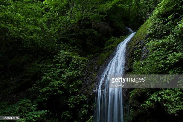 falls - isogawyi stock pictures, royalty-free photos & images