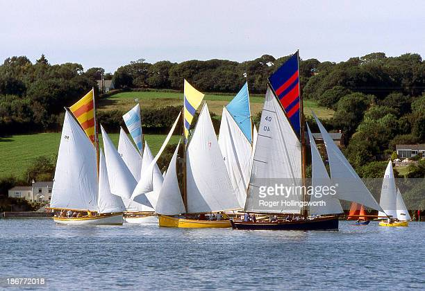 Falmouth Working Boats race in the shallows of the very restricted Point creek. 150 years ago this was a port for vessels shipping the tin &...