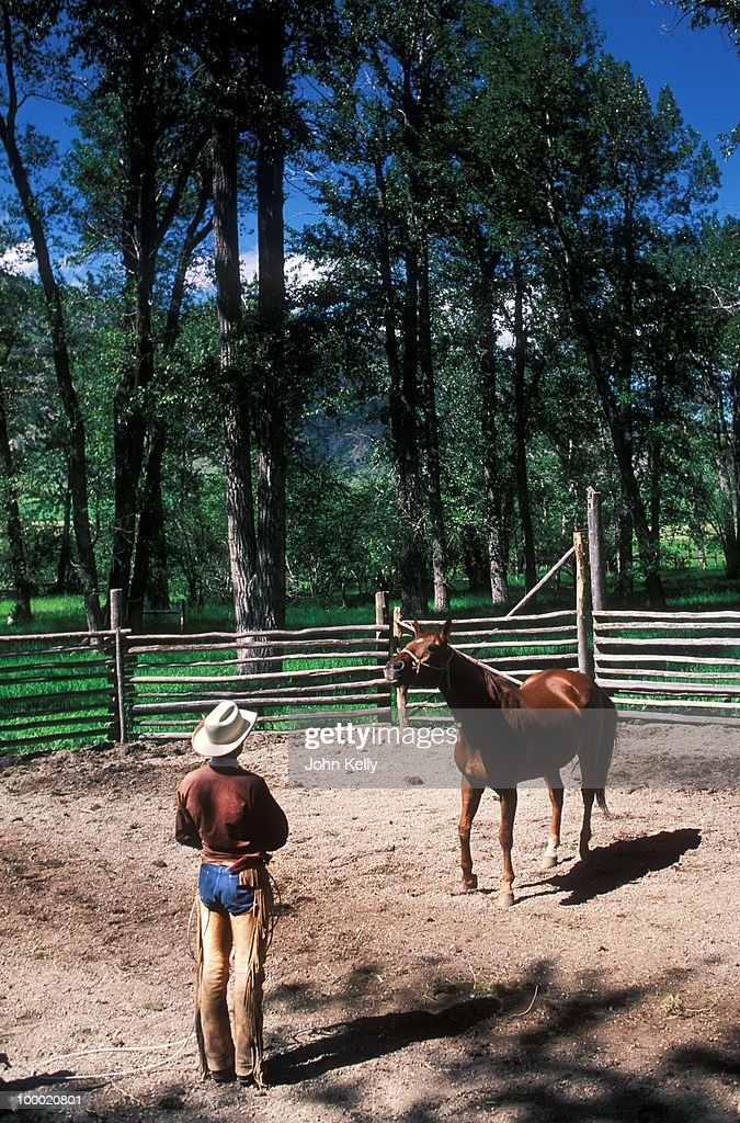 Famed horse trainer Buck Brannaman works with a horse during the filming of 'The Horse Whisperer' in 1997.