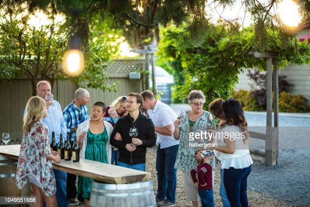 Families and Couples Enjoying a Wine Tasting Session at a Vineyard
