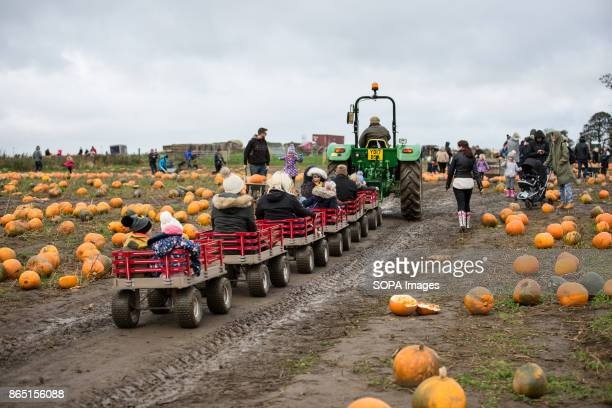 Families and their children having fun during the festival Pumpkin market is one of the exiting things locals can experience every year mainly around...