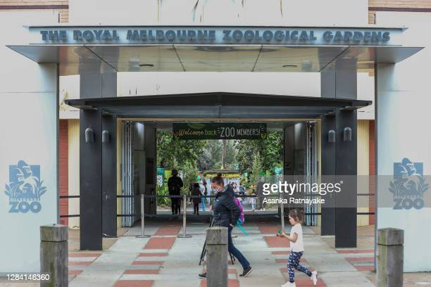 Families are seen at the entrance of the Melbourne Zoo on November 06, 2020 in Melbourne, Australia. Lockdown restrictions in Melbourne were lifted...