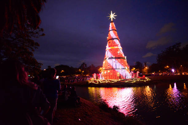 families enjoy the christmas tree in the ibirapuera park in sao paulo brazil on - Christmas Traditions In Brazil