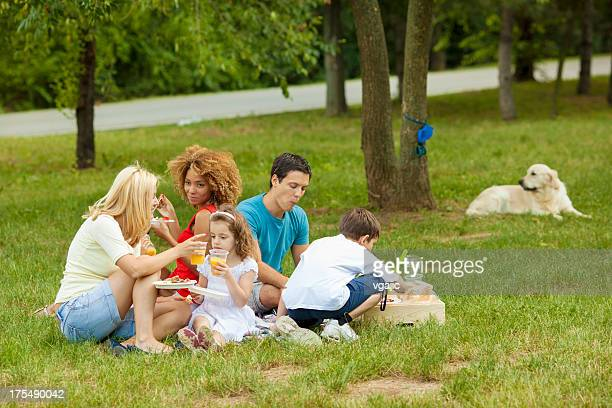 families enjoying barbecue outdoors - dog eats out girl stock photos and pictures