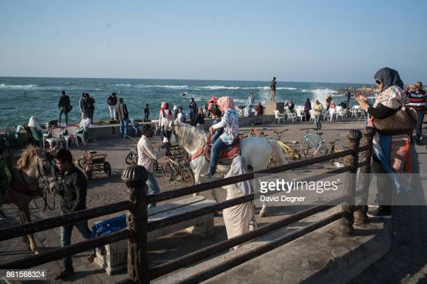 Families take photos on a horse on the corniche during Holy Week on April 14 2017 in Alexandria Egypt