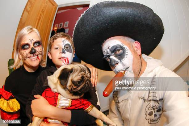 family and dog in halloween costumes - naughty halloween stock photos and pictures