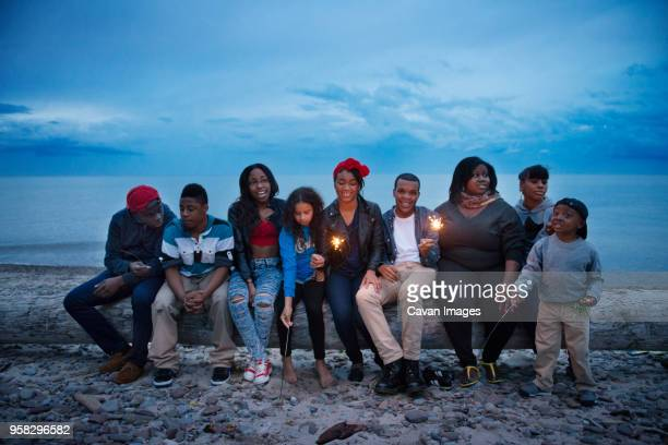 family and friends sitting on log at beach against sky - family reunion stock pictures, royalty-free photos & images