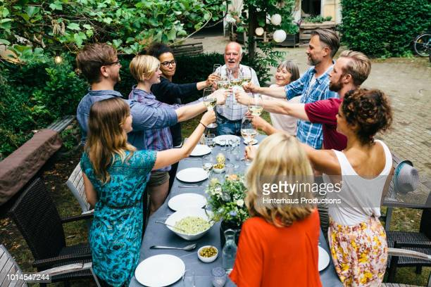 family and friends toasting one another at outdoor meal - outdoor party imagens e fotografias de stock