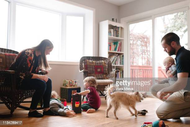 family and sons with pet dog in living room - one animal stock pictures, royalty-free photos & images