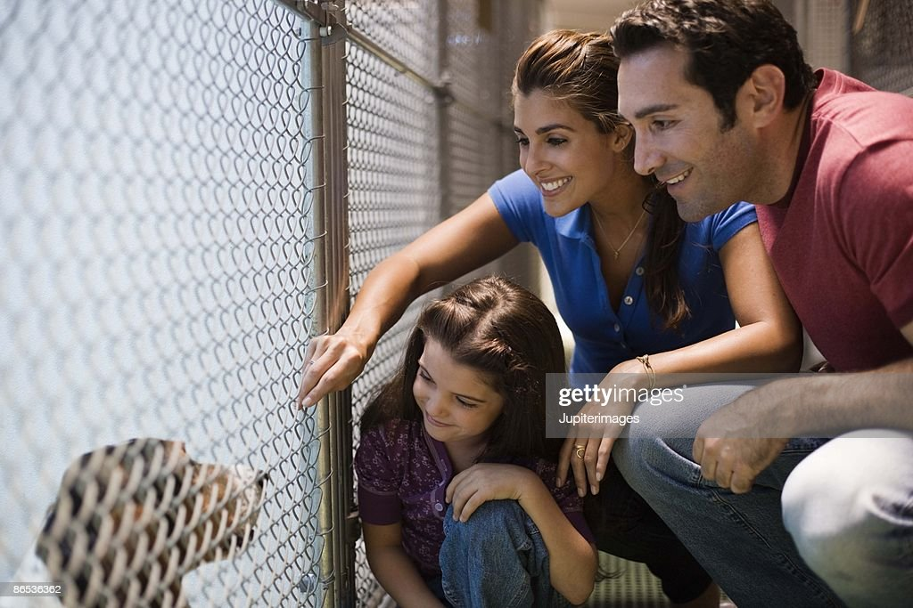 Family at an animal shelter : Stock Photo