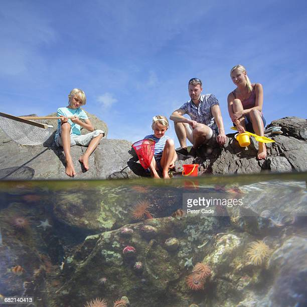 Family at beach looking into rock pool
