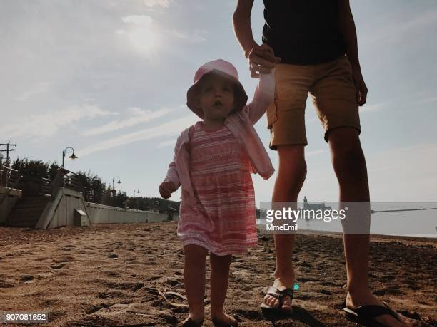 family at the beach - gaspe peninsula stock pictures, royalty-free photos & images