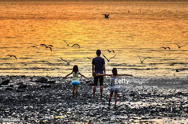 A family at the beach under the sunset