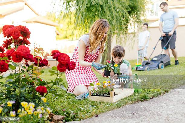 Family Backyard Activities.
