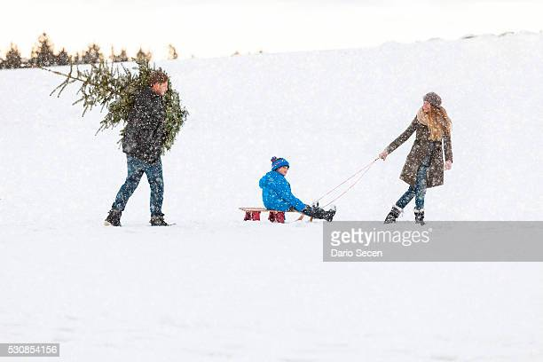 Family carries the perfect Christmas tree in snowy landscape