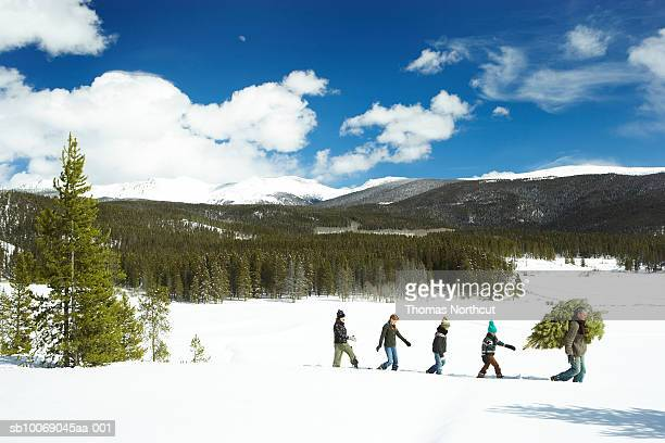 Family carrying Christmas tree in forest