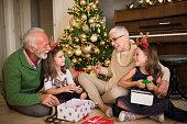 happy senior couple with grandchildren for
