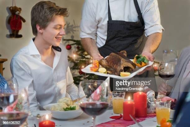 family christmas dinner with roasted duck - grupo mediano de animales - fotografias e filmes do acervo