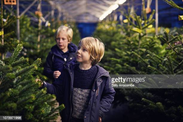 Family Christmas tree shopping together