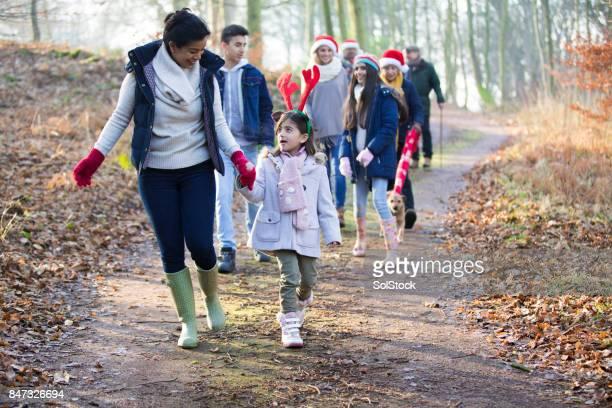 familie kerst winter wandeling - country christmas stockfoto's en -beelden