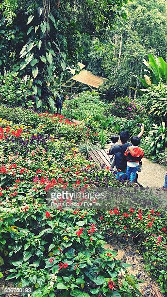 Family Clicking Selfie Through Smart Phone At Park