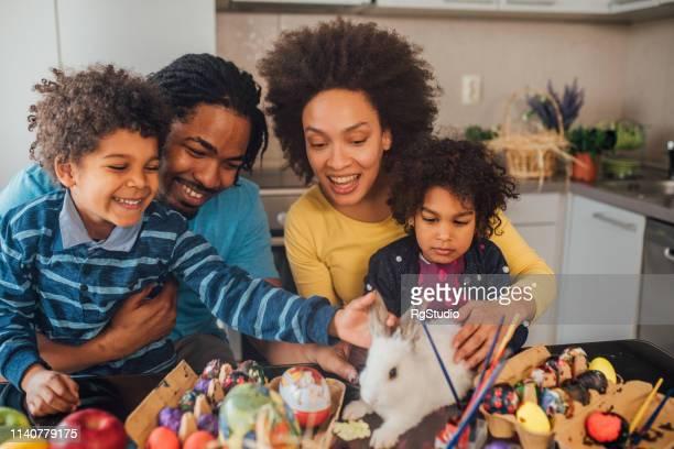 família que afaga o coelho do animal de estimação - easter - fotografias e filmes do acervo