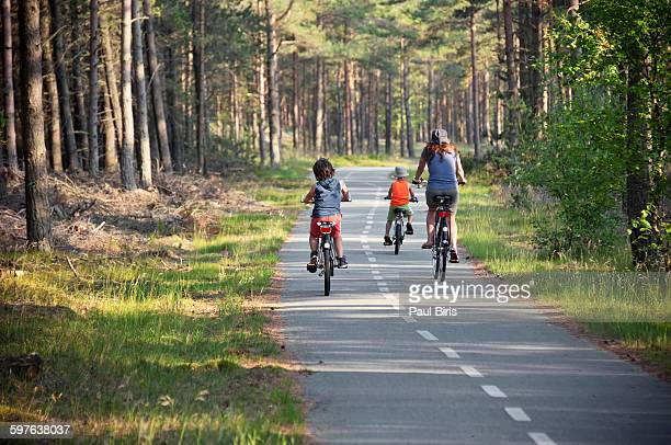 Family cycling in countryside, Denmark