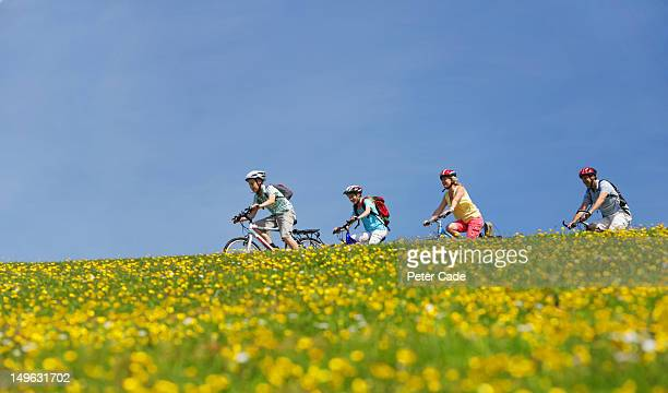 Family cycling in field of flowers