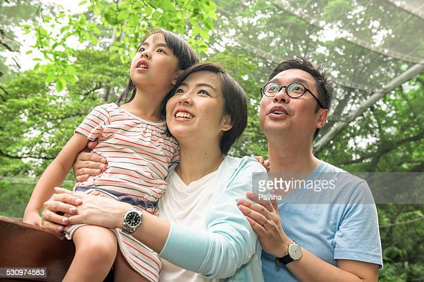 Familie Tag in der Voliere, Hong Kong Park, China, Asien