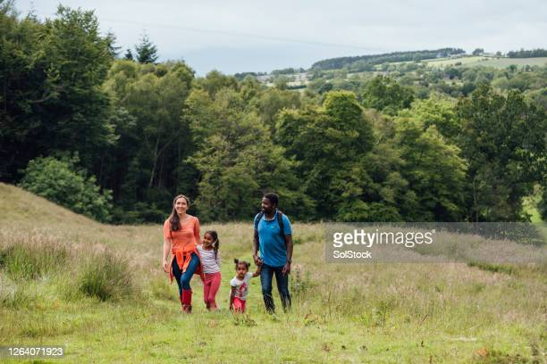 family day out - walking stock pictures, royalty-free photos & images