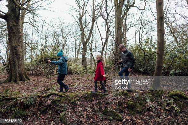 family day out - human limb stock pictures, royalty-free photos & images