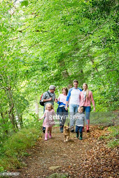 family day out - woodland stock pictures, royalty-free photos & images