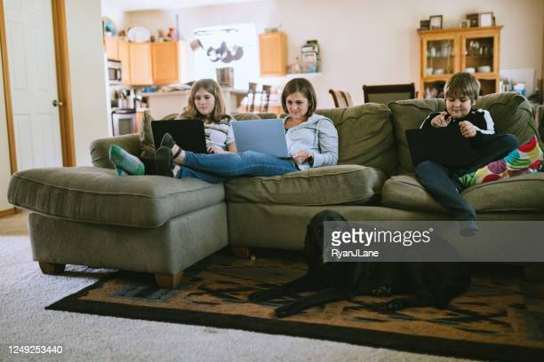 family doing school and business remotely together - animal related occupation stock pictures, royalty-free photos & images