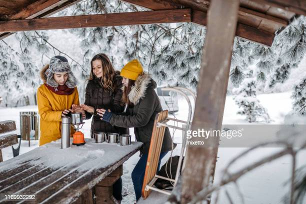 family drinking tea outdoors at winter time - 12 17 months stock pictures, royalty-free photos & images