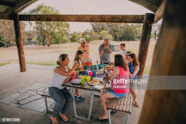 Family Enjoying a BBQ in the Park