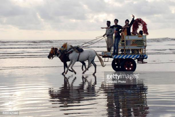 Family enjoying a chariot ride on the beach.