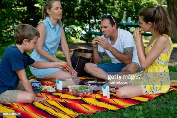 """family enjoying a picnic in public park in summer. - """"martine doucet"""" or martinedoucet stock pictures, royalty-free photos & images"""