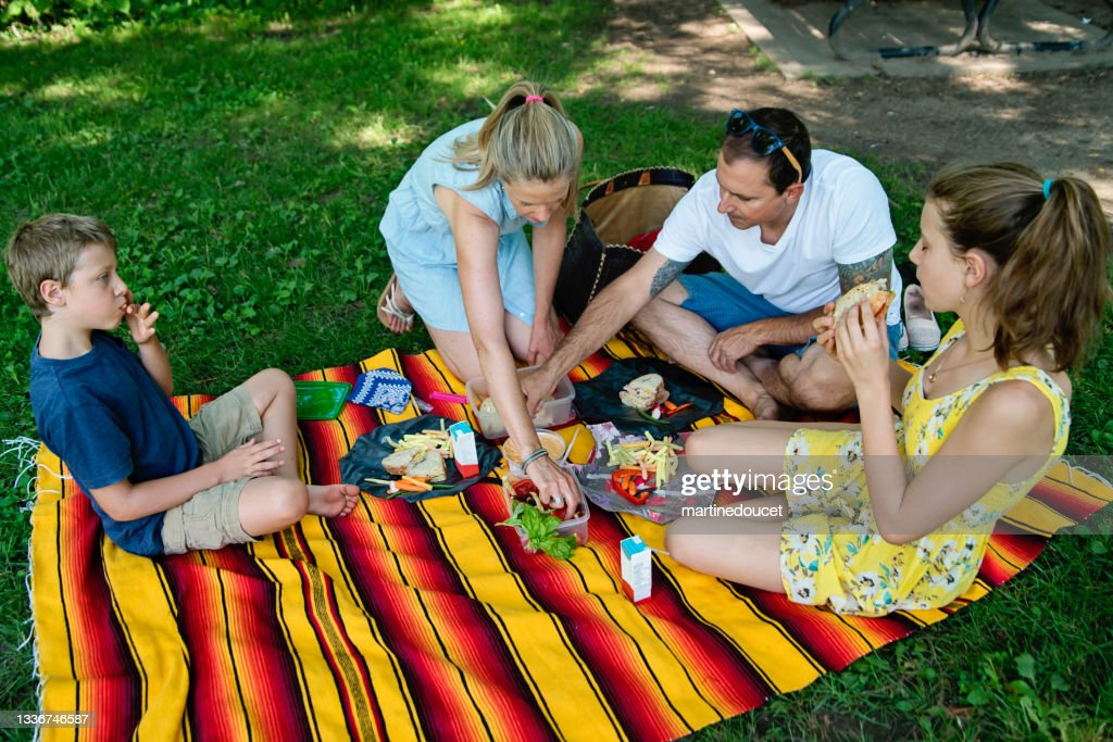 Family enjoying a picnic in public park in summer. : Stock Photo