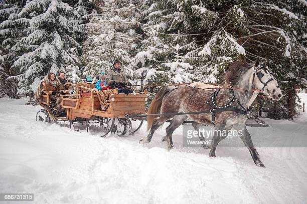 family enjoying a ride in a horse-drawn sleigh in winter - carriage stock pictures, royalty-free photos & images