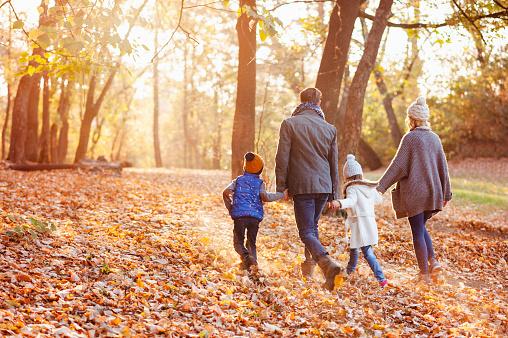 Family enjoying beautiful autumn day in the park 1069542038