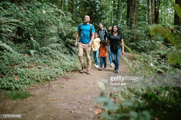 family enjoying hike on forest trail in pacific northwest - hiking stock pictures, royalty-free photos & images