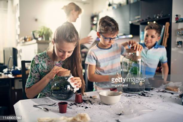 family enjoying making plant bottle gardens - leisure activity stock pictures, royalty-free photos & images