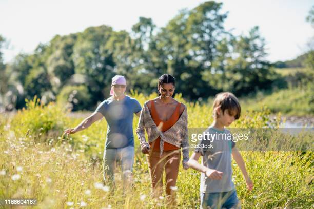 family enjoying nature - multiracial group stock pictures, royalty-free photos & images