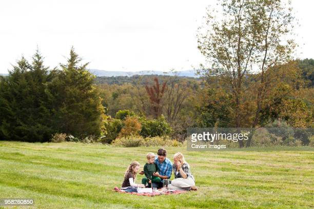 family enjoying picnic on grassy field - pique nique photos et images de collection