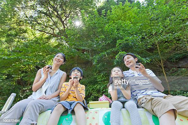 Family Enjoying Picnic