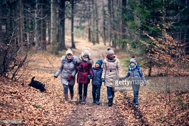 family enjoying walk in late autumn forest. - outdoor pursuit stock pictures, royalty-free photos & images
