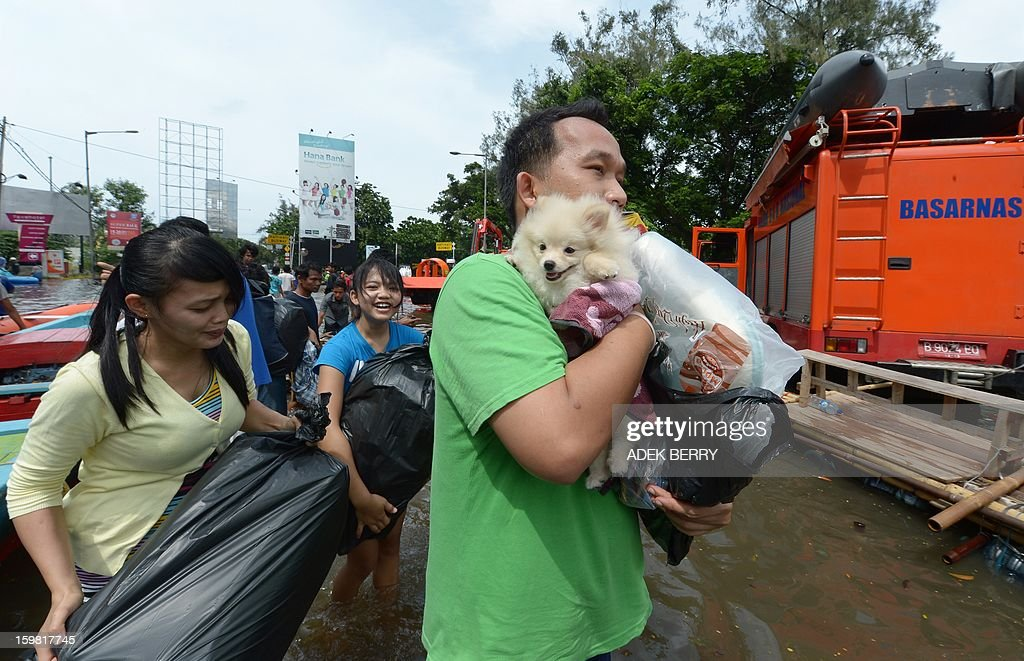 A family flees from home with their dog Chloe as floodwaters submerge parts of North Jakarta on January 21, 2013. Companies and consumers have started to calculate damages and losses from the widespread floods that hit Jakarta last week, claiming at least 15 lives, displacing thousands from their homes and afflicting capital residents with water-borne illnesses, a local newspaper reported.