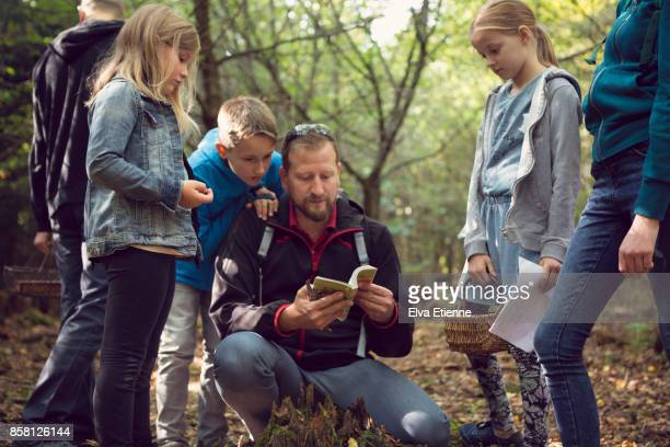 family group foraging for wild mushrooms in a forest - baden württemberg stock photos and pictures