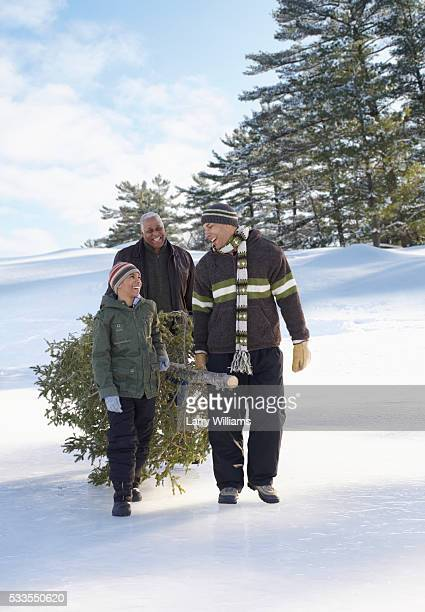 family hauling cut christmas tree in snow - african american christmas images stock pictures, royalty-free photos & images